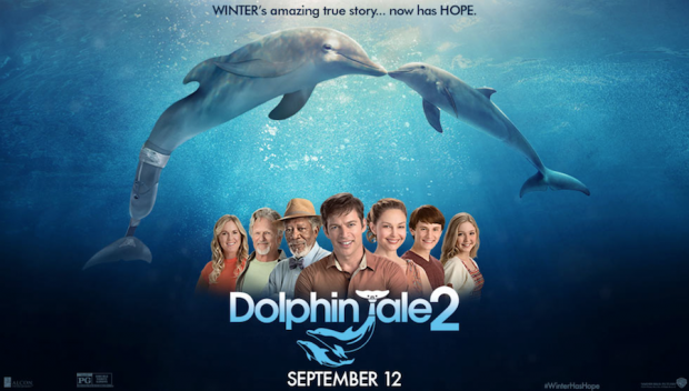 Dolphin-Tale-2